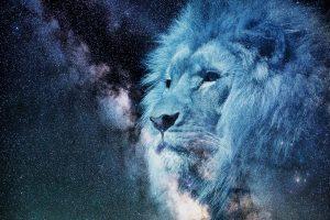 Lions Gate Portal 8-8 Chakra Transformation Cycle
