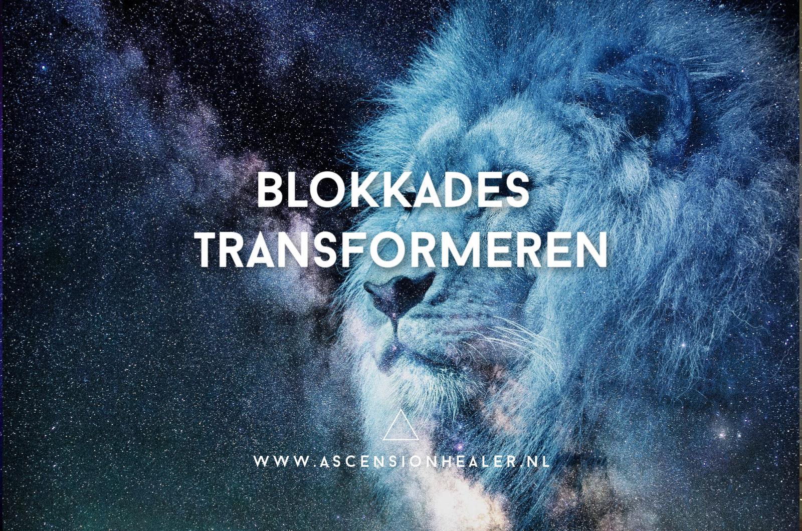 Blokkades Transformeren Lions Gate